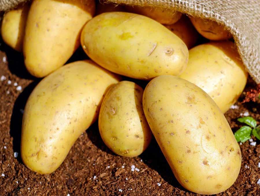 Potato on the ground.
